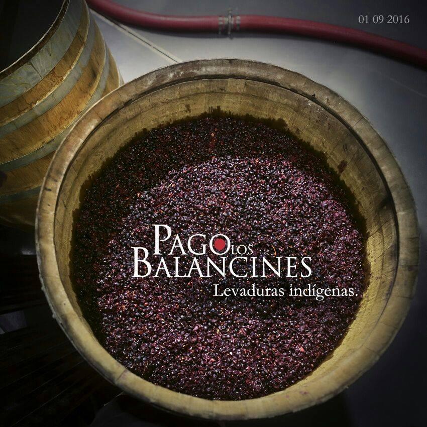 Bodega Pago Los Balancines