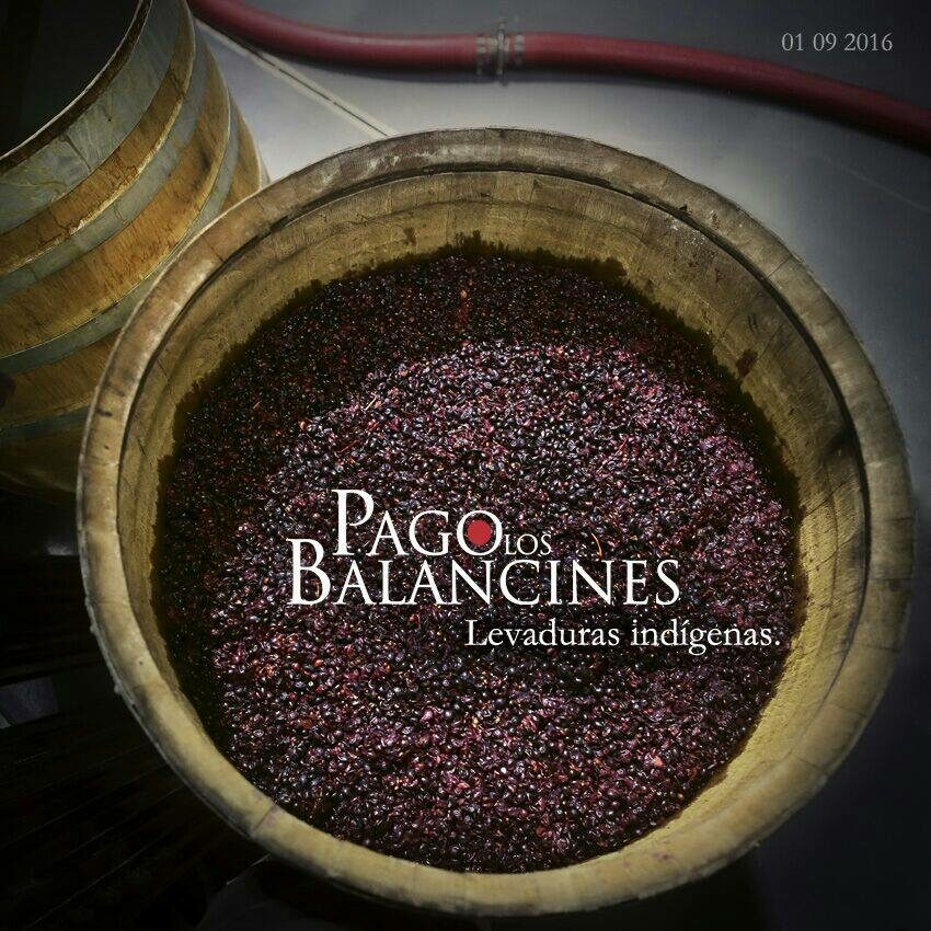 Pago-Balancines-2